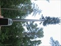 Image for simpson wood cell tower