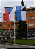 Image for Rícany - municipal flag at the Old Town Hall / mestská vlajka u Staré radnice (Central Bohemia)
