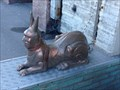 Image for Sphinxes in Saint Petersburg, Russia
