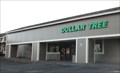 Image for Dollar Tree - Fort Bragg, CA