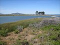 Image for Golden Gate - Crissy Field Marsh & Beach - San Francisco, CA