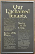Image for Our Unchained Tenants