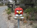 Image for Angry Bird - Tallong, NSW