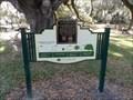 Image for Over 300 Hundred Year-Old Southern Live Oak  -  Orlando, FL