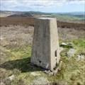 Image for O.S. Triangulation Pillar - The Crannel, Angus.