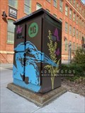 Image for Woonasquatucket River Greenway painted utility box 2 - Providence, Rhode Island
