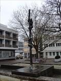 Image for Bears - Berliner Platz - Sindelfingen, Germany, BW