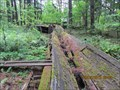 Image for LAST functioning lumber flume in USA