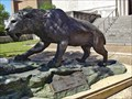 Image for Saber Tooth Cat - Austin, TX