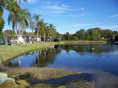 Serenity Gardens Memorial Park Largo Fl Worldwide