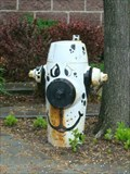 Image for Dog fire hydrant - Salt Lake City, Utah