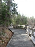 Image for Barrier-Free Boardwalk - French Lake, ON