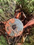 Image for Survey Marker at Marsh Lake