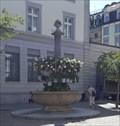 Image for Fountain on Grüningerplatz - St. Gallen, SG, Switzerland