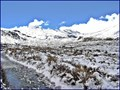 Image for Mangatepopo Valley in winter, Tongariro National Park. North Island, New Zealand.