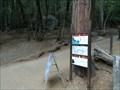 Image for John Muir Trail - Yosemite, CA