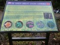 Image for The Sunken Garden's Sensory Centrepiece - Alsager, Cheshire, UK.