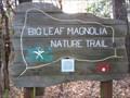 Image for Big Leaf Magnolia Nature Trail, Haines Island Park, Monroe County, Alabama
