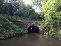Image for North East Portal - Dunhampstead Tunnel - Worcester & Birmingham Canal - Dunhampstead - Worcestershire - UK