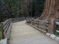 Image for General Sherman boardwalk - Sequoia National Park CA