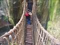 Image for Swing bridge - Lied Africa Exhibit - Henry Doorly Zoo - Omaha Nebraska