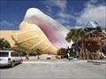 Image for Conch Shells - Seven Seas Souvenir Shop - Los Fresnos TX