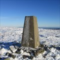 Image for O.S Triangulation Pillar - Cat Law, Angus.