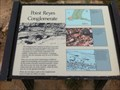 Image for Point Reyes Conglomerate - Point Reyes National Seashore