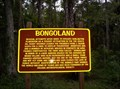 Image for Ruins of Bongoland, Port Orange, Florida