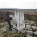 Image for O.S. Triangulation Pillar - Hill of Cat, Angus.