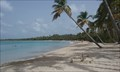 Image for La Plage de Salines - Sainte-Anne, Martinique