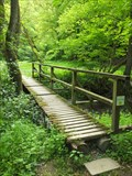 Image for Hiking Path Footbridge, Mörsdorf - RLP / Germany