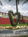 Image for Heart bush - Ferraz de Vasconcelos, Brazil