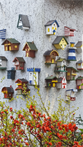Image for Unique Bird House Village - Sierksdorf/ Schleswig-Holstein/ Deutschland