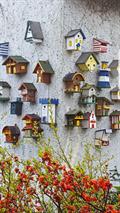 Image for Unique Bird House Village - Sierksdorf/ Schleswig-Holstein/ Deutschland