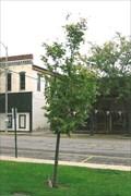 Image for John L. DeLaurenti ~ Greenville, IL