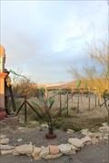 Image for El Dorado Hotel Bottle Tree -- Terlingua TX