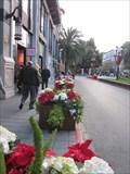 Image for Santana Row Christmas Display - San Jose, CA