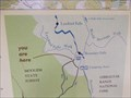 Image for You Are Here - Boundary Falls Picnic Area, Washpool National Park, Glen Innes, NSW