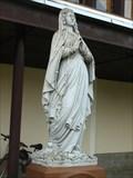 Image for Panna Marie u kaple sv. Václava - Blízkov, okres Ždár nad Sázavou, CZ