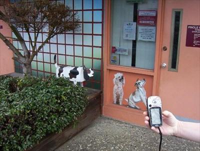 Pet Hospital Dog Box.