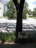 Image for Tree Crossing - St Petersburg, FL