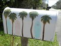 Image for Palms and Surfboards - Ponte Vedra Beach, FL