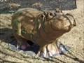 Image for Hutto Family Eye Care Hippo - Hutto, TX