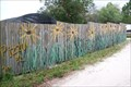 Image for Black-Eyed Susans on a Fence - Tampa, FL