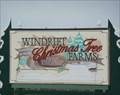 Image for Windrift Christmas Tree Farm - Tyndall MB