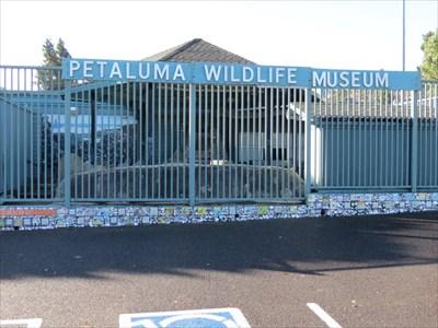 Petaluma Wildlife Museum Sign, Petaluma, California