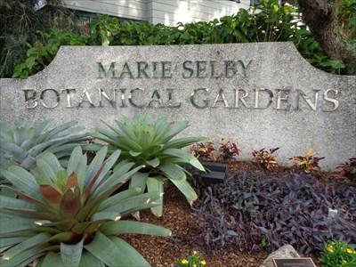 veritas vita visited Marie Selby Botanical Gardens