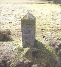 Image for PCWW Boundary Stone, Yellowmead Down, SW Dartmoor.