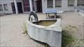 Image for Sheep Horn Fountain - Birgisch, VS, Switzerland